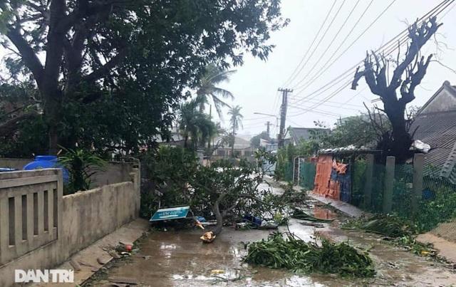 Đảo Lý Sơn tan hoang nhà cửa, tàu thuyền sau khi bão số 9 quét qua - 5