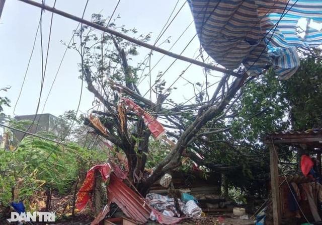 Đảo Lý Sơn tan hoang nhà cửa, tàu thuyền sau khi bão số 9 quét qua - 6