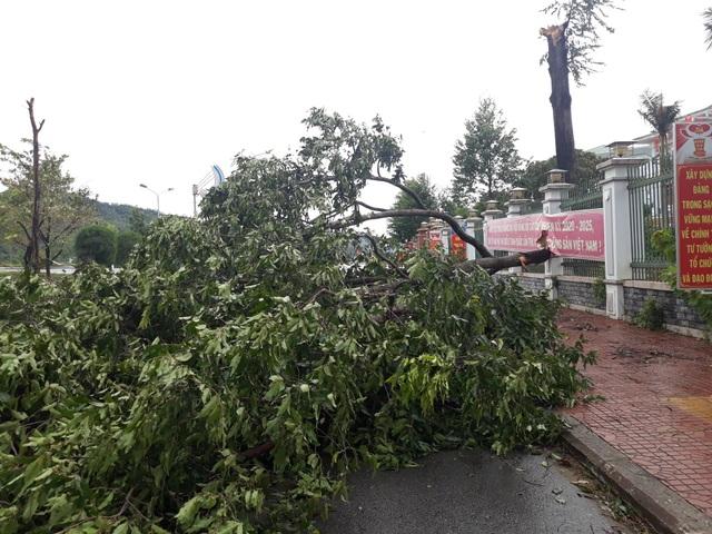400 hộ dân bị chia cắt vì ngập lụt - 4