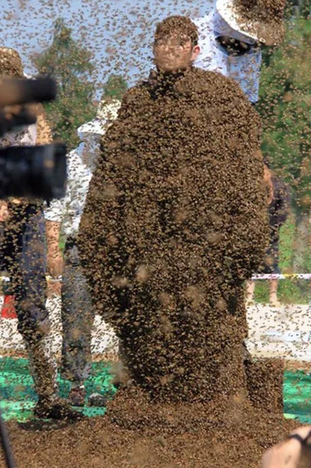 Cho gần 64 kg ong phủ quanh thân, người đàn ông lập kỷ lục thế giới mới - 2