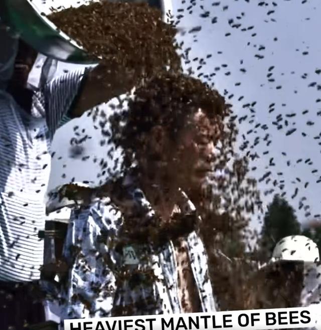 Cho gần 64 kg ong phủ quanh thân, người đàn ông lập kỷ lục thế giới mới - 3