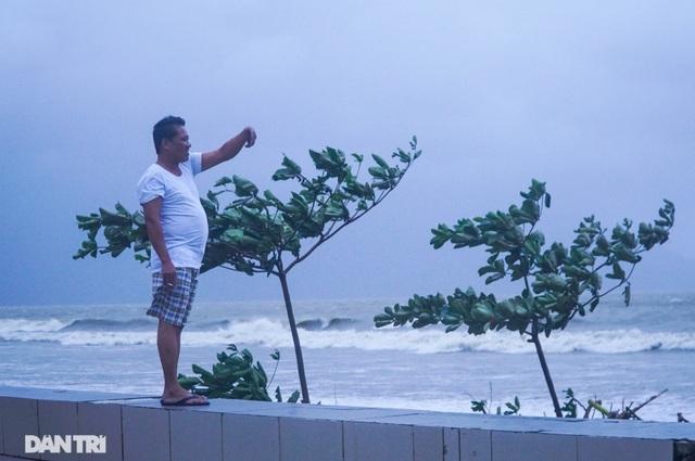 Đường phố Đà Nẵng ngổn ngang, cây xanh ngã đổ la liệt sau bão - 12