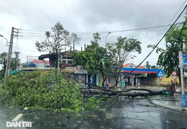 Quảng Ngãi: Nhà dân tan hoang sau bão số 9 - 5