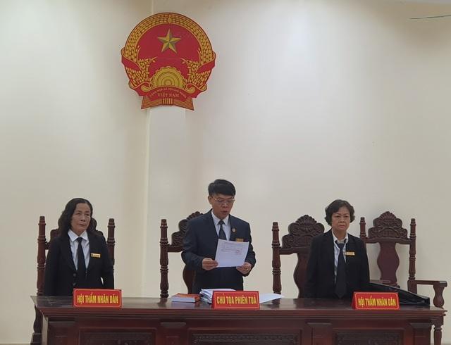 Nữ quái bắt cóc cháu bé 2 tuổi ở Bắc Ninh bị tuyên 5 năm tù - 3