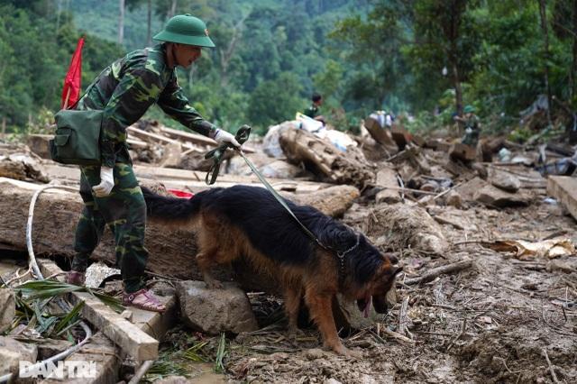 Hình ảnh hàng trăm người lật tung đất đá, tìm người mất tích tại Trà Leng - 5