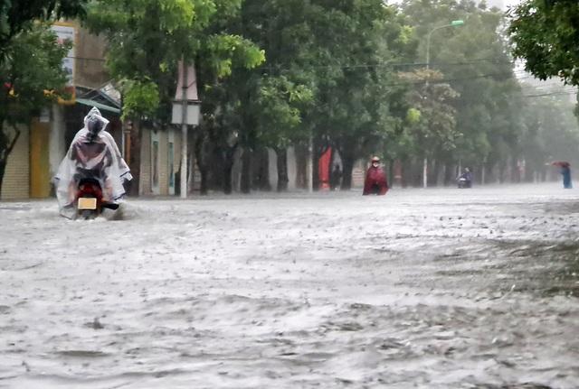 Cận cảnh thành phố Vinh bị nước bủa vây - 2