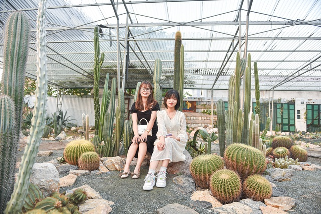 Lost in the cactus garden - the new check-in coordinate of Hanoi youth - 7