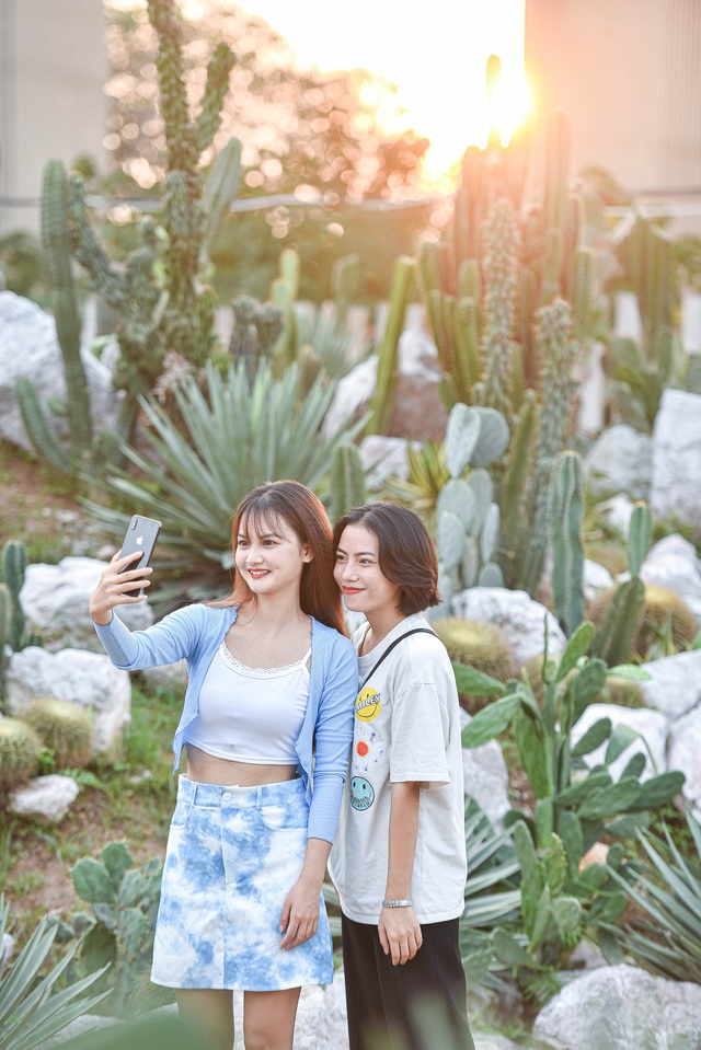 Lost in the cactus garden - the new check-in coordinate of Hanoi youth - 6