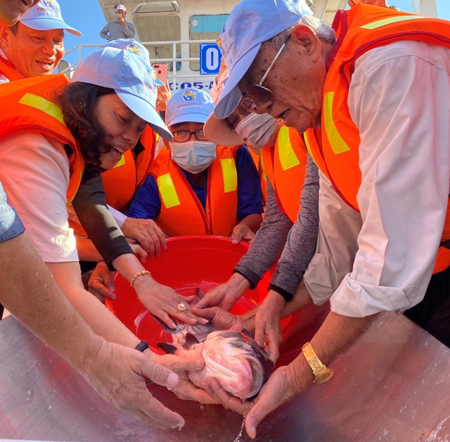 Thả gần 19 tấn cá giống xuống sông tái tạo nguồn lợi thủy sản - 1