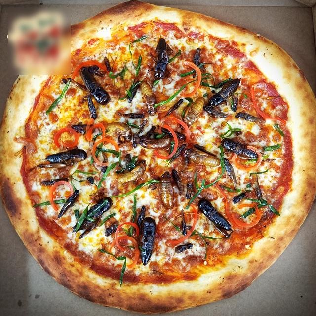 Toát mồ hôi nếm thử pizza lúc nhúc côn trùng ở Hà Nội - 2