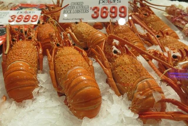Australia dừng xuất khẩu tôm hùm sang Trung Quốc - 1