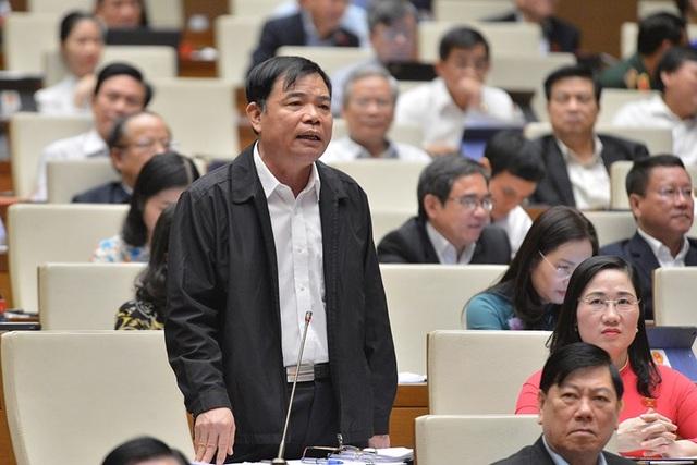 Bộ trưởng nêu thành tích giữ rừng, đại biểu Quốc hội dẫn chứng phá rừng - 2