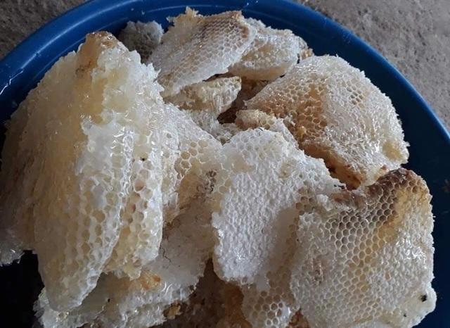 Mật ong trắng như sữa: Mỗi năm chỉ 1 lần, hàng hiếm từ đỉnh núi mây - 1