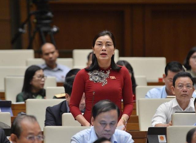 Bộ trưởng nêu thành tích giữ rừng, đại biểu Quốc hội dẫn chứng phá rừng - 3