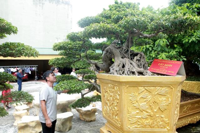 """Chiêm ngưỡng cặp sanh cổ """"mọc ngược"""" giá 10 tỷ đồng của nữ đại gia Phú Thọ - 8"""
