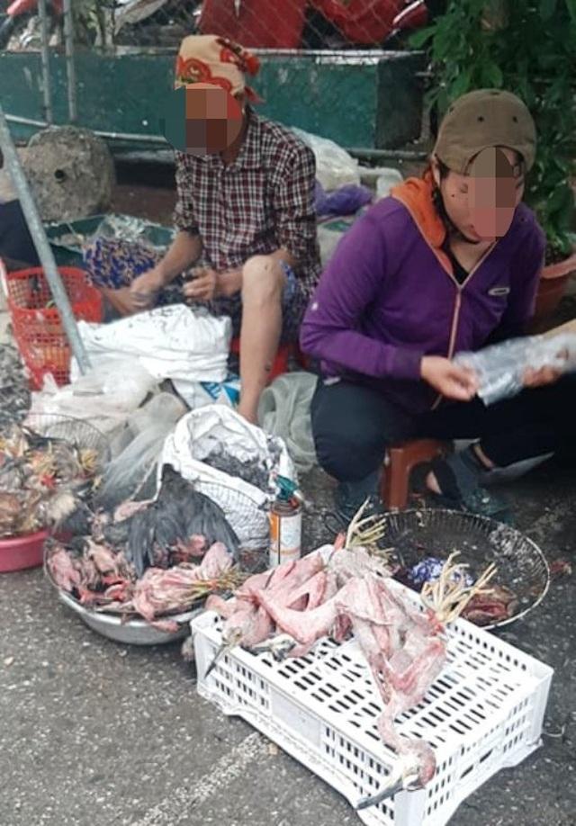 Chim trời bán đầy ngoài chợ, mua dễ như... mớ rau - 7