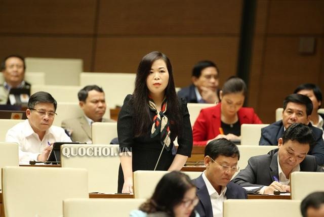 Đại biểu bình luận về kiến giải mất rừng do Mỹ rải hoá chất của Bộ trưởng - 2