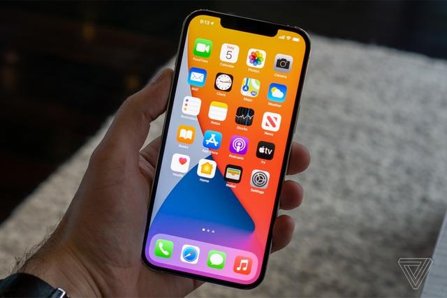 Cận cảnh bộ đôi iPhone 12 mini và 12 Pro Max - Khác biệt lớn về kích cỡ - 13