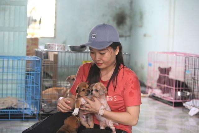 """Người """"mẹ"""" của những chú chó, mèo hoang ở Đà Nẵng - 3"""