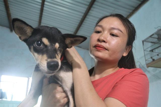 """Người """"mẹ"""" của những chú chó, mèo hoang ở Đà Nẵng - 4"""