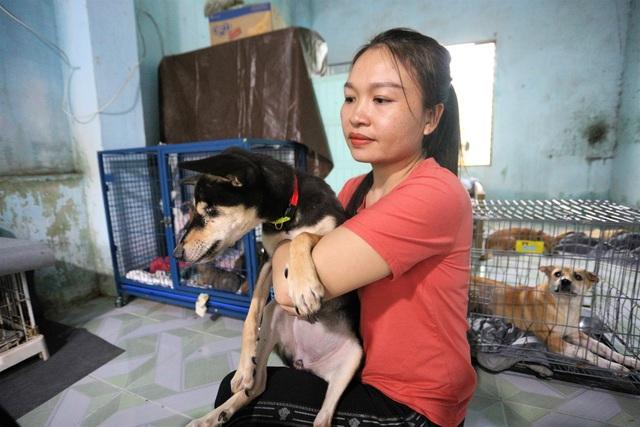 """Người """"mẹ"""" của những chú chó, mèo hoang ở Đà Nẵng - 7"""