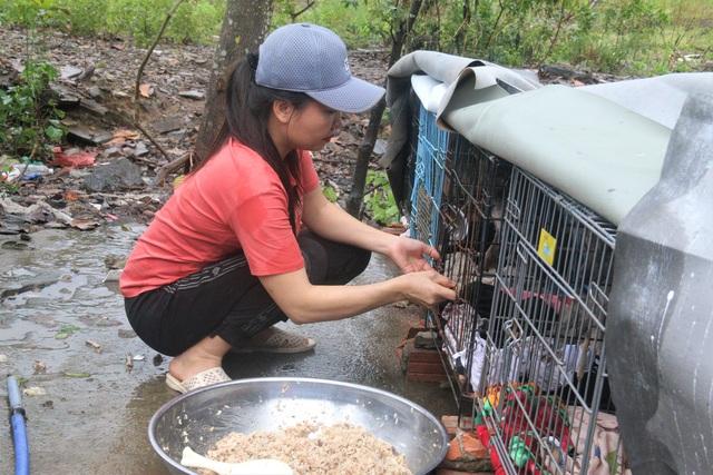 """Người """"mẹ"""" của những chú chó, mèo hoang ở Đà Nẵng - 2"""