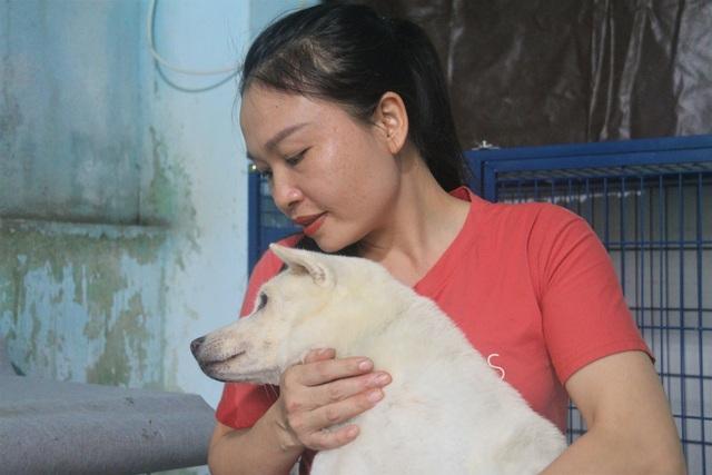 """Người """"mẹ"""" của những chú chó, mèo hoang ở Đà Nẵng - 5"""