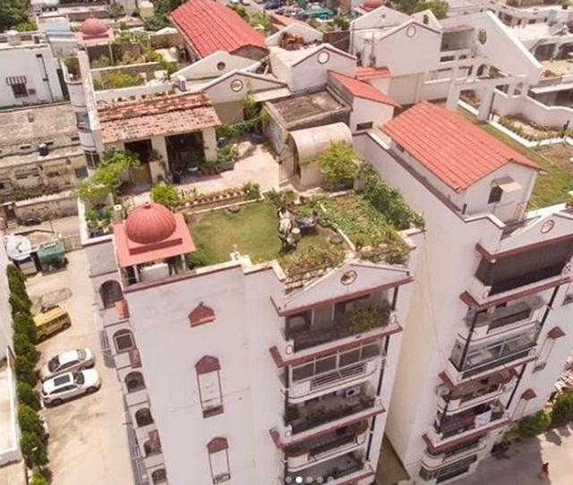 Mát mắt với khu vườn 240m2 trên sân thượng tầng 7 xanh tốt như nông trại - 3