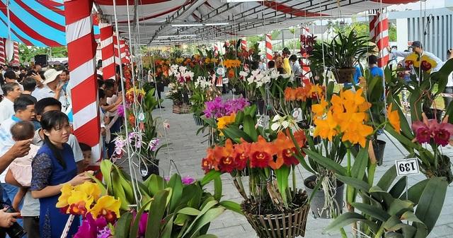 Hàng ngàn chậu lan khoe sắc tại hội thi hoa lan toàn quốc năm 2020 - 1