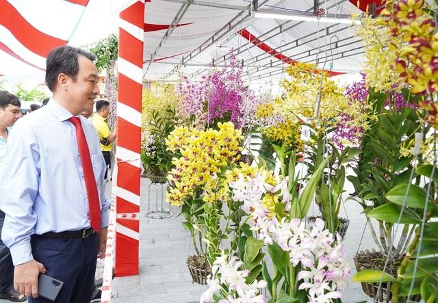 Hàng ngàn chậu lan khoe sắc tại hội thi hoa lan toàn quốc năm 2020 - 2