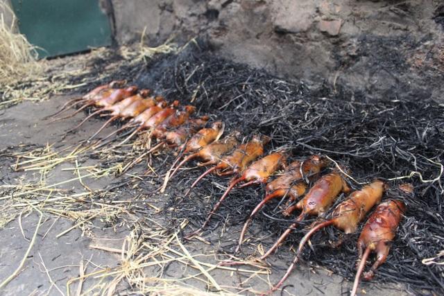 """Kỳ lạ làng """"nghiện"""" ăn thịt chuột ở Hà Nội, trẻ em và phụ nữ đều thích mê - 2"""