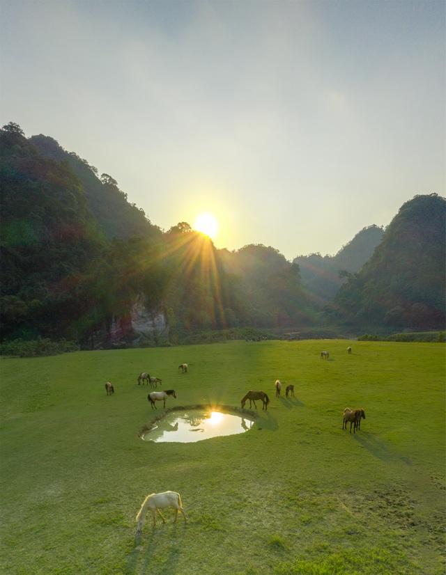 """Miền thảo nguyên xanh đẹp tựa """"tiên cảnh"""" cách Hà Nội chỉ hơn 100km - 5"""
