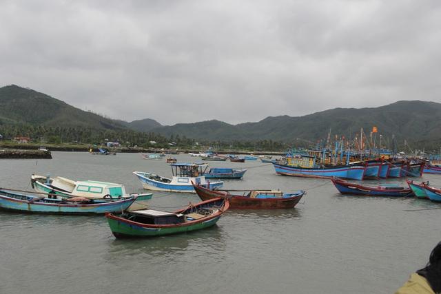 Phú Yên: Yêu cầu người dân không lơ là, chủ quan đối với bão số 12 - 2