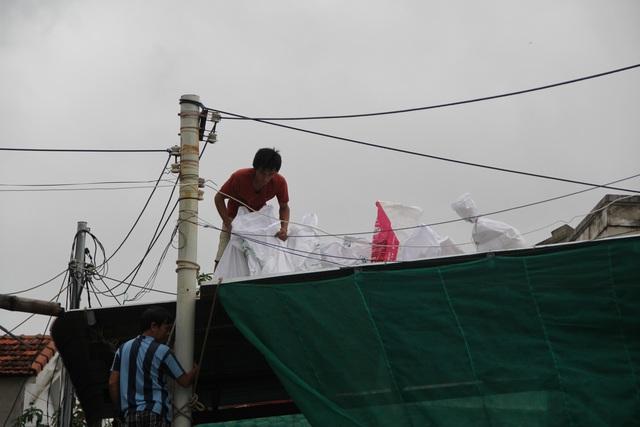 Phú Yên: Yêu cầu người dân không lơ là, chủ quan đối với bão số 12 - 6