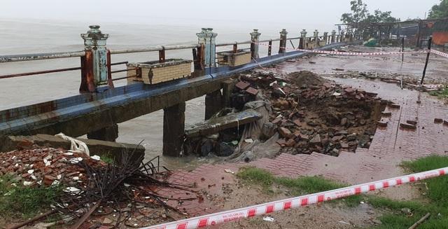 Hình ảnh bão số 12 thổi xiêu vẹo người đi đường, quật đổ cây xanh - 11