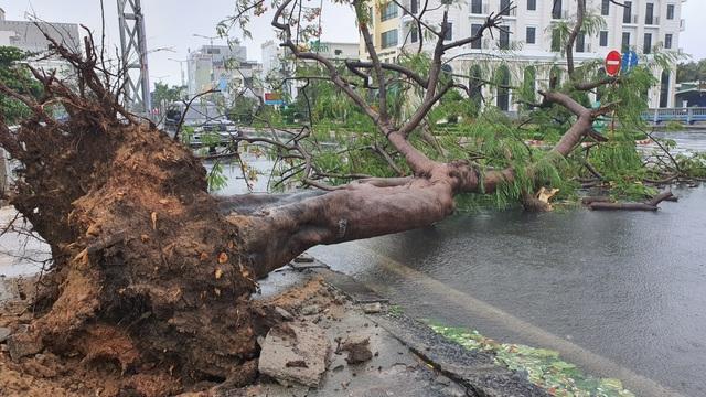 Phú Yên mưa lớn, lũ lên nhanh, dân vội vàng đi sơ tán - 10