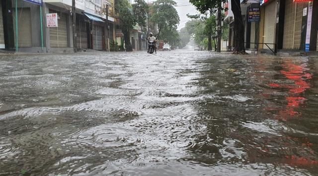 Hình ảnh bão số 12 thổi xiêu vẹo người đi đường, quật đổ cây xanh - 7