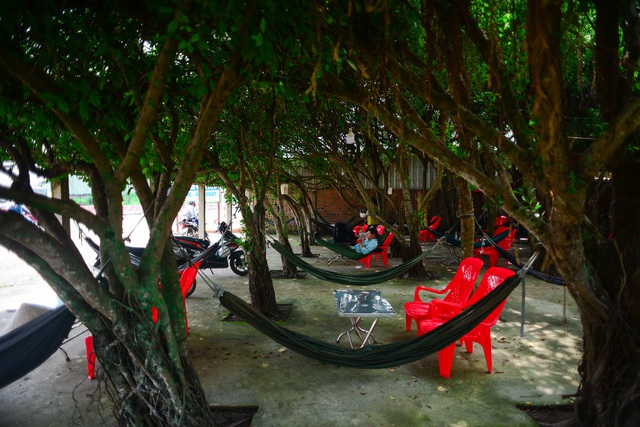 """The cafe is made up of 24 """"giant"""" si trees, cool inside like air-conditioning in Long An - 16"""
