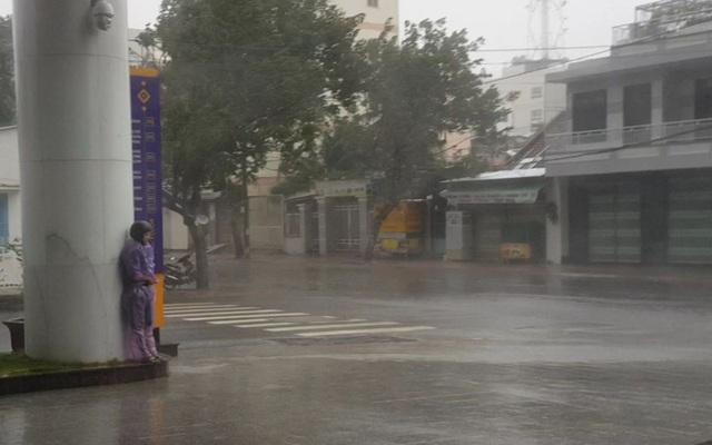 Hình ảnh bão số 12 thổi xiêu vẹo người đi đường, quật đổ cây xanh - 1