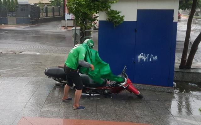 Hình ảnh bão số 12 thổi xiêu vẹo người đi đường, quật đổ cây xanh - 2