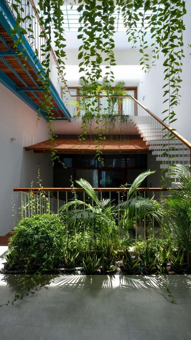 """""""Khu rừng nhiệt đới"""" nằm ẩn trong nhà phố khiến ai bước vào cũng trầm trồ - 2"""