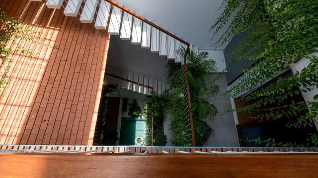 """""""Khu rừng nhiệt đới"""" nằm ẩn trong nhà phố khiến ai bước vào cũng trầm trồ - 3"""