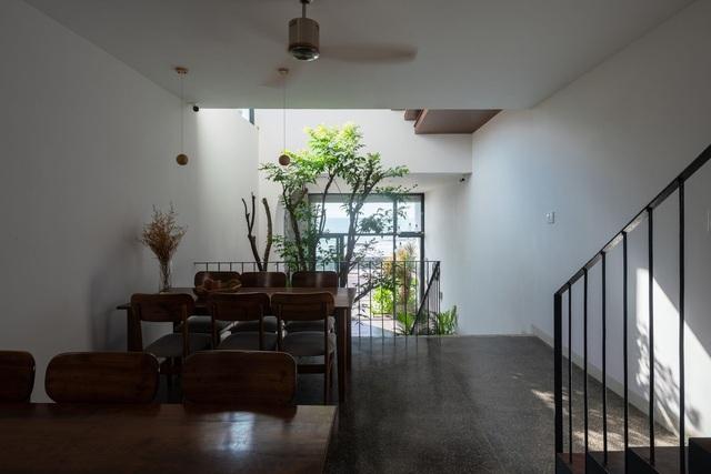"""""""Khu rừng nhiệt đới"""" nằm ẩn trong nhà phố khiến ai bước vào cũng trầm trồ - 8"""