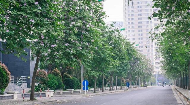 Xe bị xịt sơn ở KĐT Dương Nội: Văn hóa đỗ xe, thủ phạm và diễn biến bất ngờ - 4