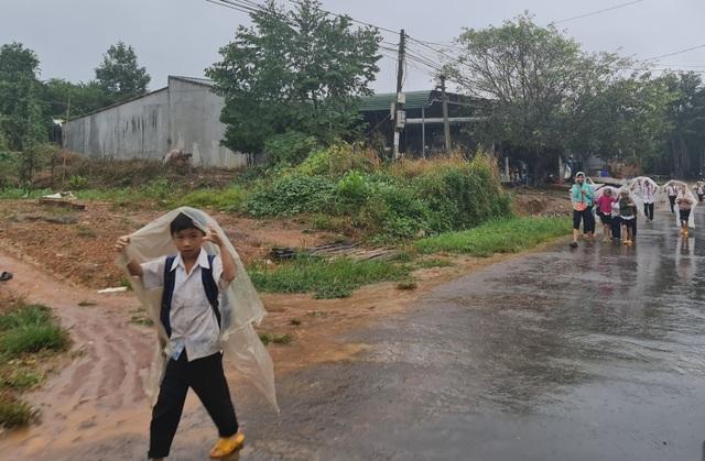 Xót cảnh học sinh vùng cao đội vỏ bao phân đến trường ngày mưa bão - 1