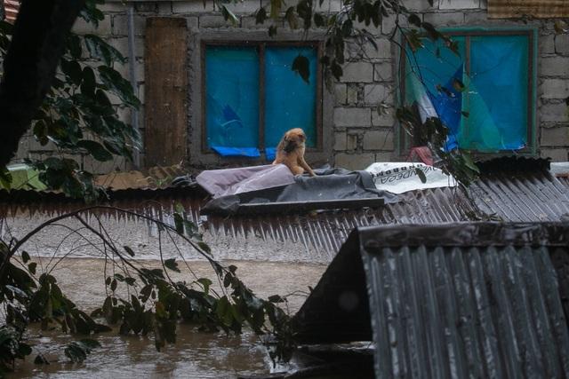 """Bão Vamco càn quét Phillippines, Manila tê liệt trong """"biển"""" nước - 12"""