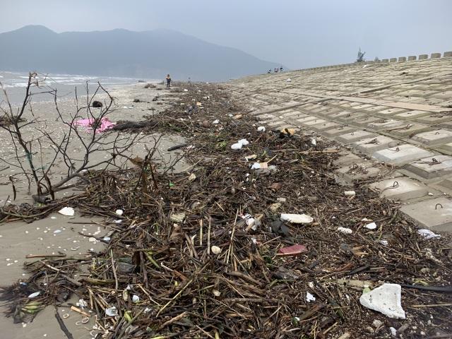 Hàng chục tấn rác bủa vây bãi biển sau lũ - 3