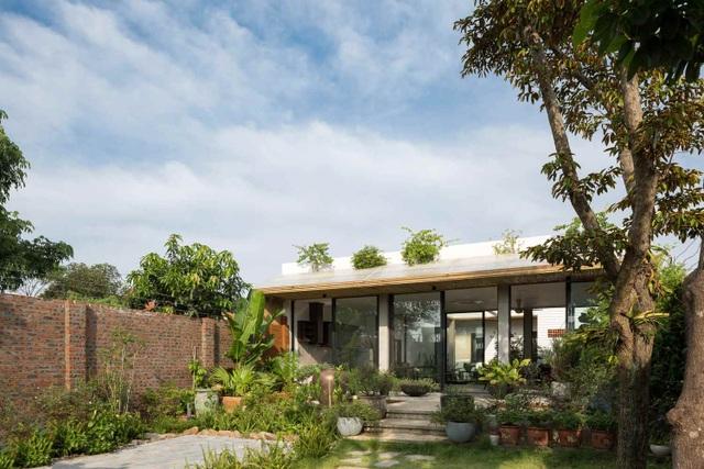 Choáng ngợp nhà vườn rộng 560m2 đẹp bình yên như làng quê Bắc Bộ thu nhỏ - 1