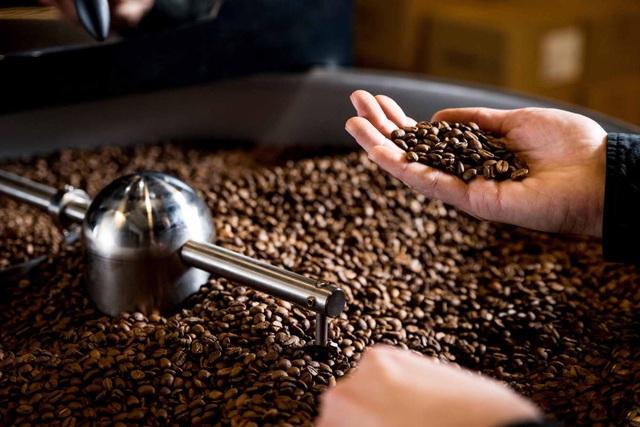 """Giá cà phê, tiêu giảm sâu khiến nông dân và doanh nghiệp """"kiệt quệ"""" - 2"""