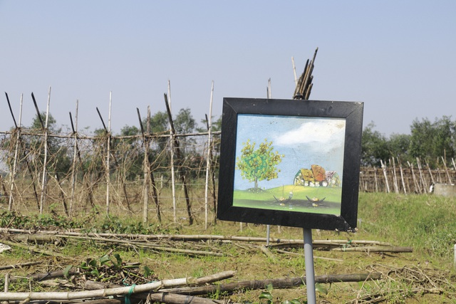 Nông dân xót xa cảnh hoang tàn của vựa rau lớn nhất Hà Tĩnh - 2